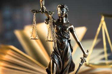 Training: How to do Judicial Review
