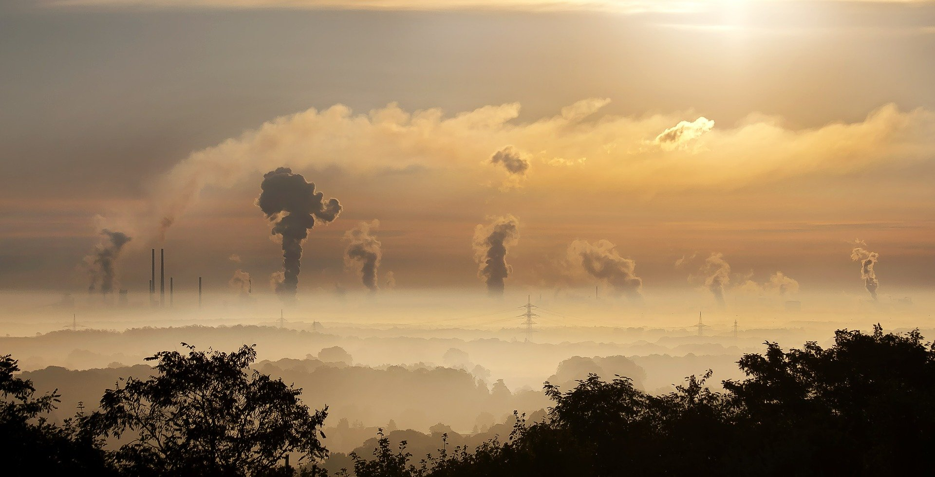 Smoke from industrial action in the environment