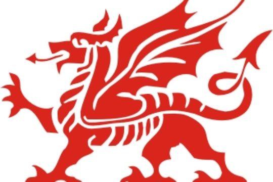 Wales Conference / Gyhoeddus Cymru